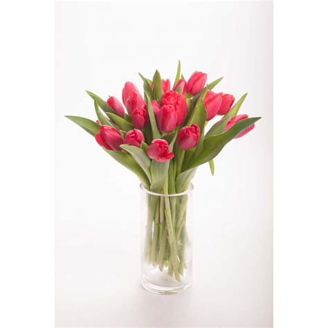 red tulip bouquet tulip bouquets gifts flower muse