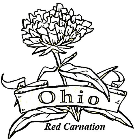 State Of Ohio Coloring Page Supercoloring Com Ohio State Coloring Pages