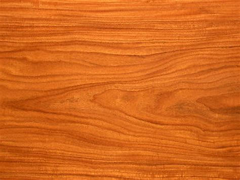 woodworking facts the wood connection a few facts about the wood used for
