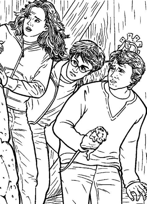 harry potter coloring book for adults grown ups 8 harry potter coloring pages jpg ai illustrator