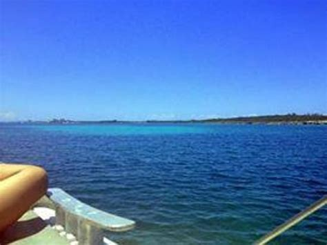 catamaran sail and snorkel bahamas the reef picture of seahorse sail and snorkel adventure