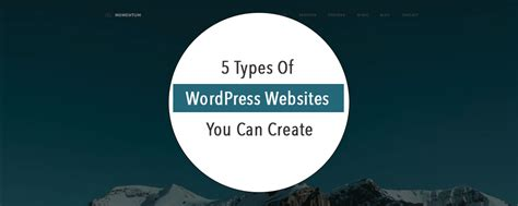 websites where you can draw 5 types of wordpress websites you can create