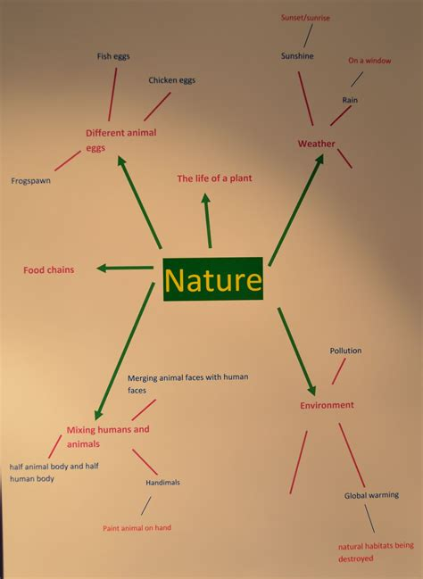 patterns in nature mind map ordinary and or extraordinary mind maps