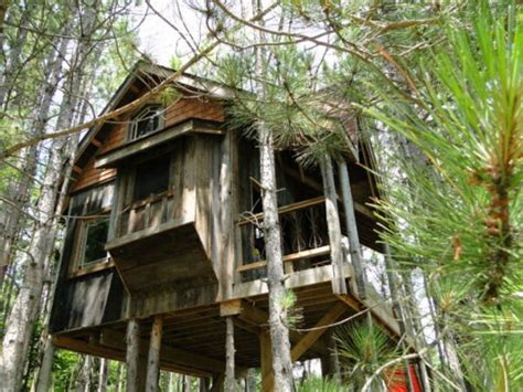 canadian house tree house made from reclaimed materials in canada