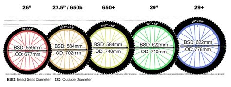 mtb wheel sizes guide    explained mountain biking guides guides  planet