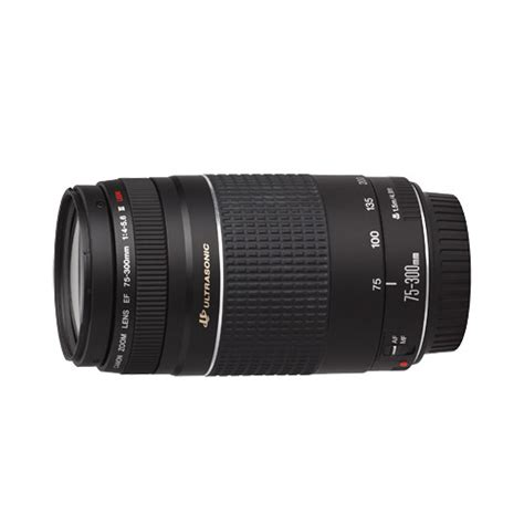 Canon Lens Ef 75 300 Mm F4 56 Iii Usm buy canon ef 75 300mm iii usm f 4 5 6 lens at best price in india on naaptol