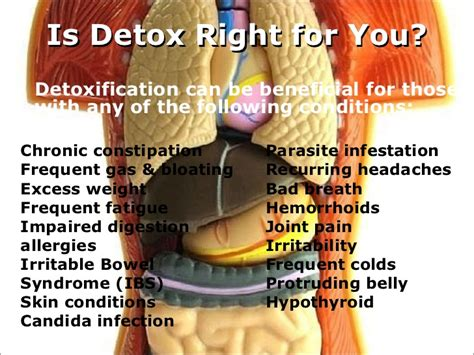 Frequent Detox by Detox Diet Plan
