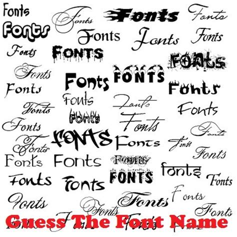 fonts free find the font used in any website book of knowledge