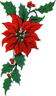 christmas flowers animated images gifs pictures animations