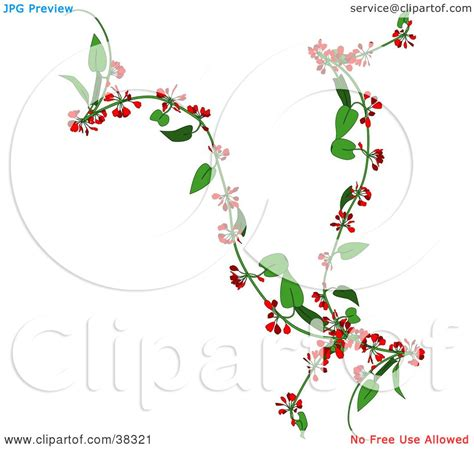 creepers fiori clipart illustration of a creeper plant with flowers
