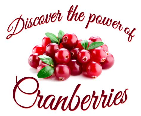 Do Cranberry Pills Help Detox by Azo Cranberry Test Pill Reviews