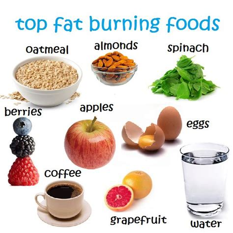 The Best Diet Fats And by 25 Best Ideas About Burning Foods On