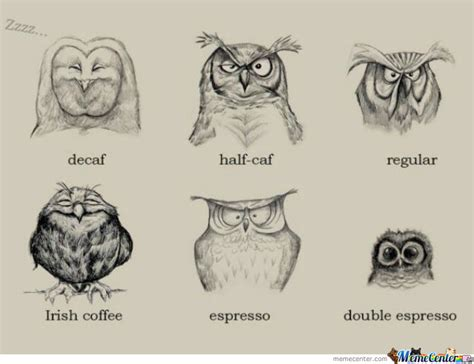 Types Of Meme Faces - owl type of coffee by ade0173 meme center