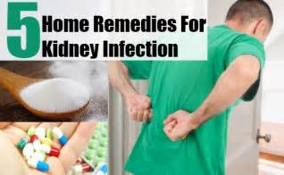 home remedies for kidney infection pin symptoms of kidney failure dogs disease pictures on