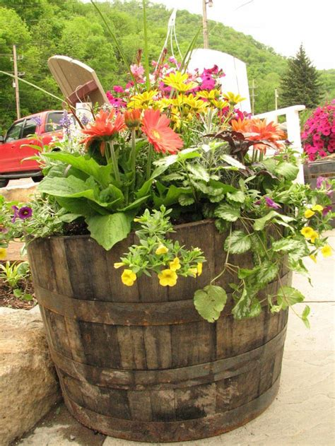 whiskey barrel planter garden ideas pinterest