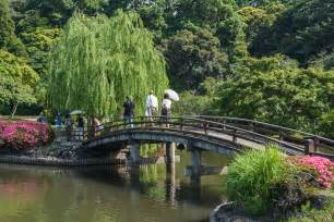 shinjuku gyoen national garden tokyo japan 171