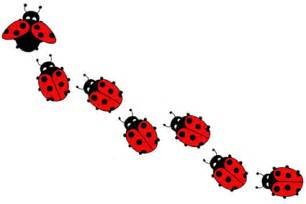 lady bug cliparts co