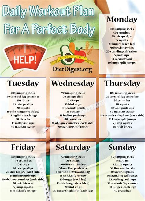 daily workout plan for a fitness diet