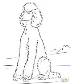 poodle coloring pages poodle coloring page free printable coloring pages