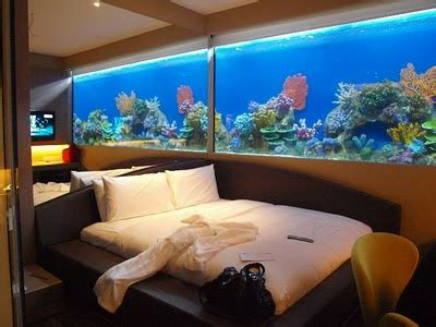 fish tank bedroom 17 bedroom fish tank
