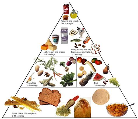 food pyramid top diet foods healthy food diets
