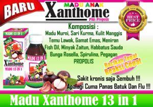 Madu Anak Xanthome Xanthone Plus Propolis 13 In 1 Jlt106 madu anak xanthome plus propolis 13 in 1 sarana muslim store