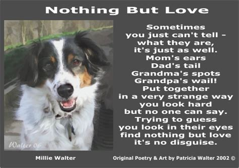 poems about dogs poems quotes