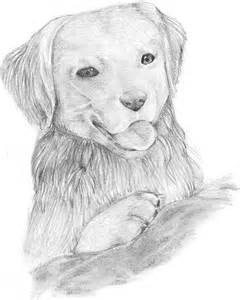 coloring pages of dog and puppy collections