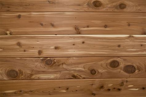 Cedar Chips For Closets And Drawers by How To Get Rid Of Moths Naturally