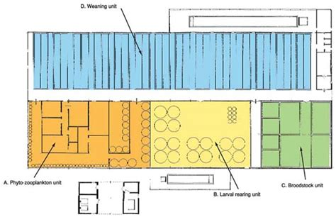 layout of hatchery site utilisation and layout planning agenda of council