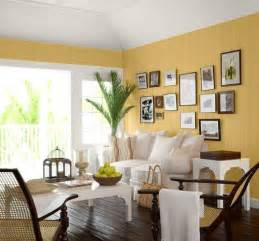 Living Room Color by Living Room Paint Ideas Interior Home Design
