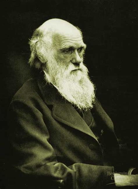 biography charles darwin charles darwin
