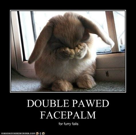 Double Facepalm Meme - double pawed facepalm