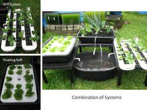 Commonly Used Aquaponics System Designs For Growing Food