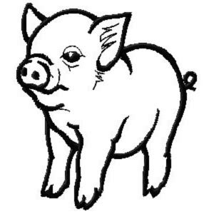 ch407 baby pig embroidery design 3 99 golden needle