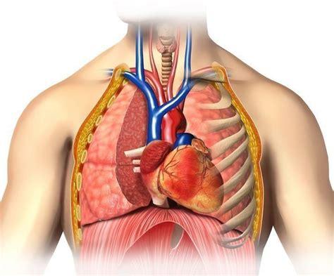 pulsazioni testa battito cardiaco accelerato a riposo in gravidanza
