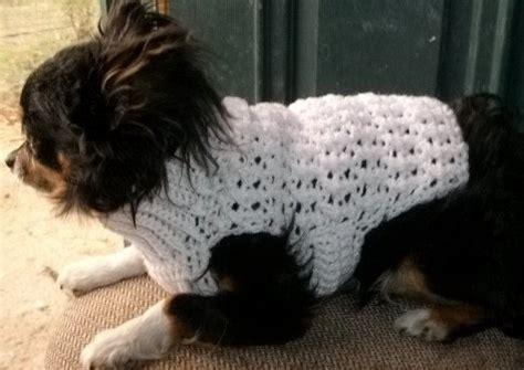 easy crochet pattern for dog coat easy dog sweater patterns free patterns