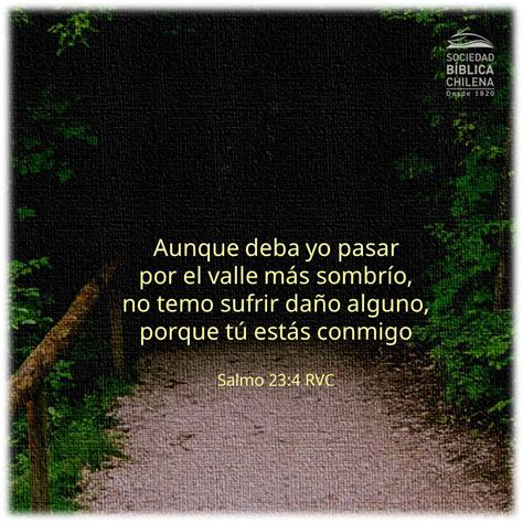 libro aunque caminen por el versiculos de la biblia cuando est 225 s pasando por dificultades sociedad b 237 blica chilena