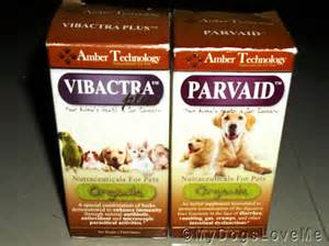 treating parvo at home my dogs me pop for the puppies battling parvo