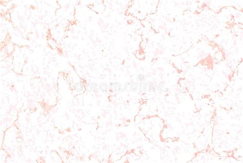 vector marble pattern vector seamless pattern white marble texture with rose