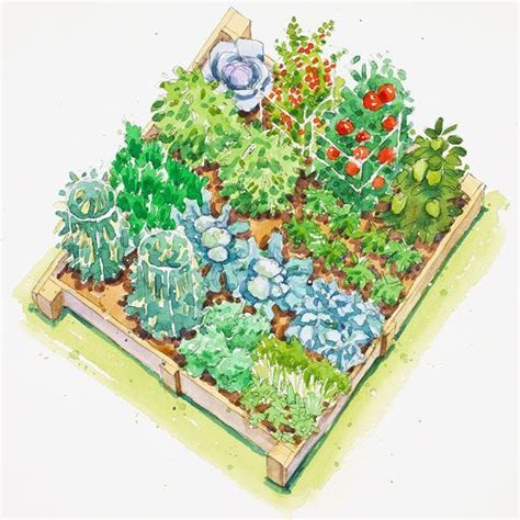 fall vegetable garden plan garden - Fall Garden Plan