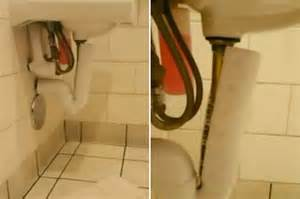 hidden camera in home bathroom hidden camera found in starbucks toilet by 5 year old boy