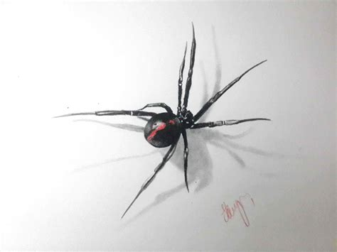 3d Spider Drawing Youtube 3d Spider
