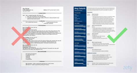 Executive 1 Resume Template by Executive Resume Sle And Complete Guide 20 Exles
