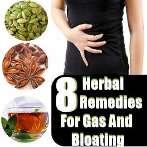 home remedies for bloating 8 best herbal remedies for gas and bloating diy home
