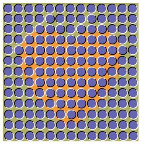 ilusiones opticas humanas ilusiones 211 pticas ilusion 243 ptica coraz 243 n en movimiento