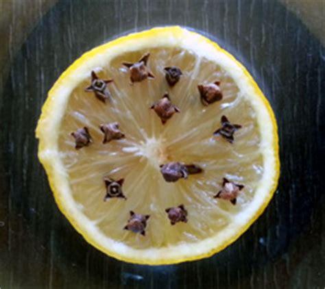 wie vertreibt fruchtfliegen obstfliegen fruchtfliegen mit hausmitteln bekl 228 mpfen