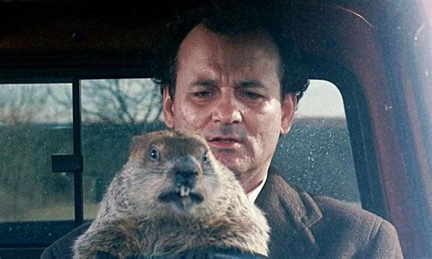 groundhog day where filmed groundhog day marathon on sky comedy what does