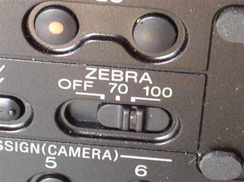 zebra pattern camera how to get great video images using zebras to control