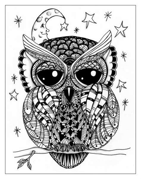 owl art bird print tumblr owl coloring pages owl